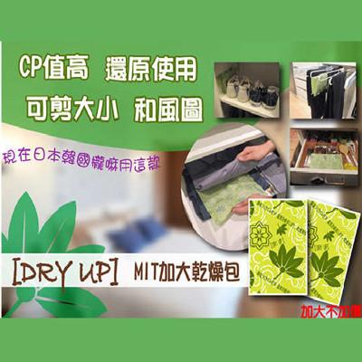 DRY UP台灣製強效防潮除濕乾燥包(4入/片) (0.9折)