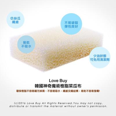 韓國神奇魔術樹脂菜瓜布 (3.7折)
