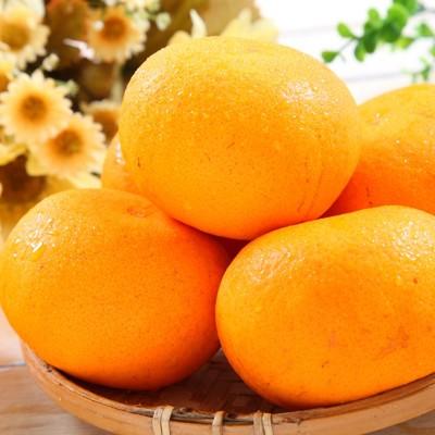 【一等鮮】澳洲黃金茂谷柑〈約180g/顆〉 (5折)
