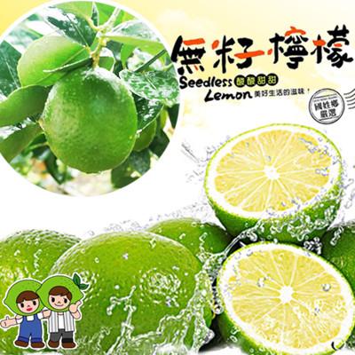 國姓鄉特選薄皮無籽檸檬 (3.7折)