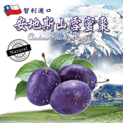 智利進口安地斯山雪蜜棗(125g)-10包 (2.8折)