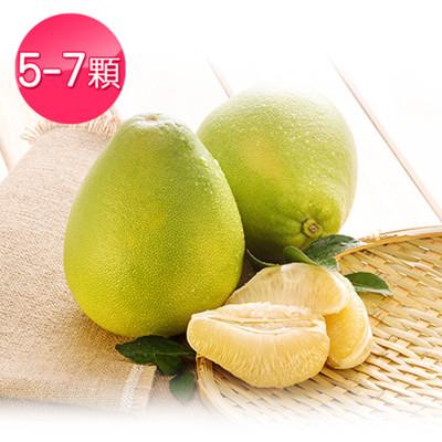台南正宗特A級麻豆文旦/柚子5斤禮盒裝 (3.5折)