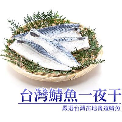 嚴選營養薄鹽鯖魚一夜干180g/片 (1.6折)