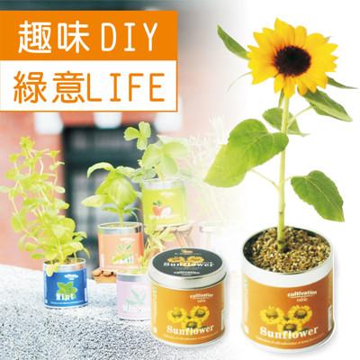 【迎光】迷你花園桌上栽培罐 (3.9折)