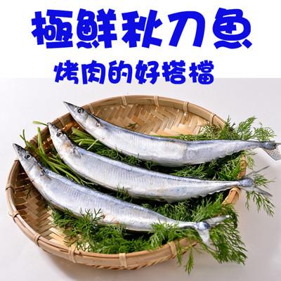 肥美秋刀魚 (單位:隻) (4.2折)