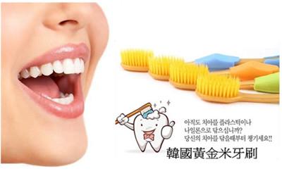 韓國超軟Q軟毛牙刷 刷了絕對會愛上!!! (0.7折)