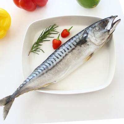 整尾薄鹽挪威鯖魚 (4.4折)