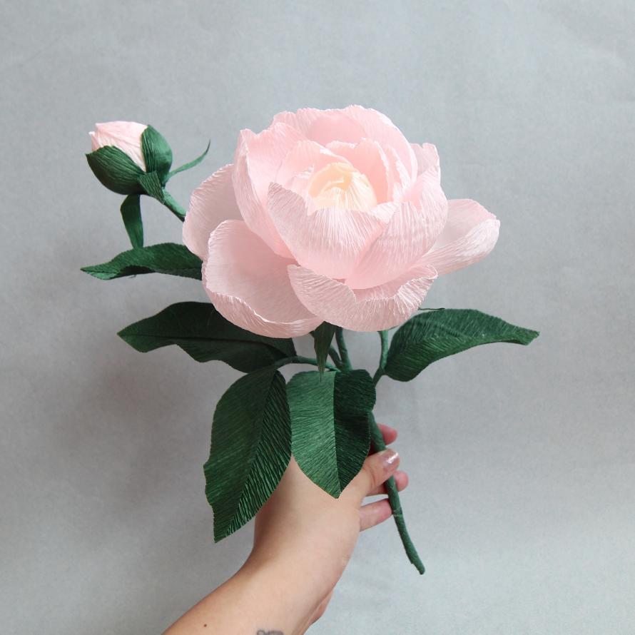 Crepe Paper Flower Workshop Closed Peony Sunday 13th Jan Peatix