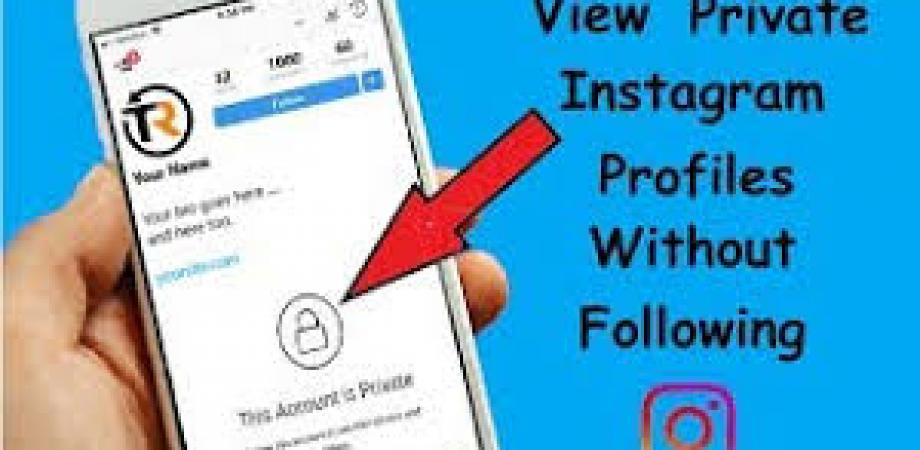 Quickly Way To Download Private Instagram Viewer App | Peatix