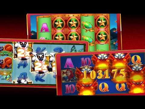 Conquer Casino 🎖️ Nz$50 Bonus 🎖️ Casino