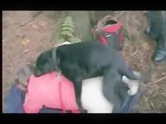 Video Porno Mujer Abotonada Con Perro Full Rar Peatix