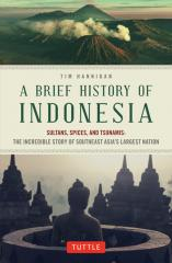 download ebook a brief history of time bahasa indonesia