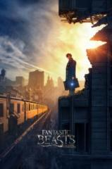 Fantastic Beasts And Where To Find Them English Mp4 Hd Movie Download Peatix