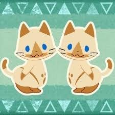 cat7ailu