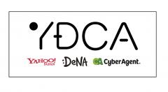 YDCA 新卒採用
