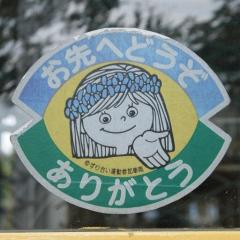 touyokokosugi