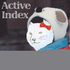ActiveIndex