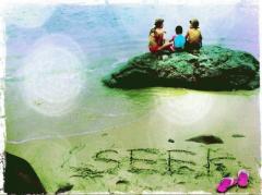 seek_event