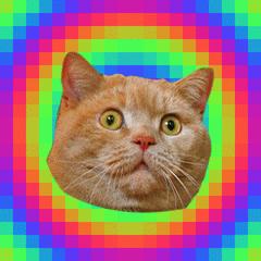 FMS_Cat