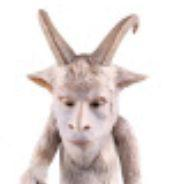 goat_0324