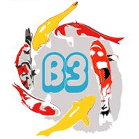 Bonnou3
