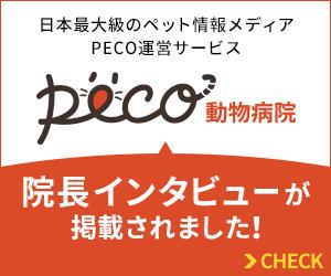 日本最大級のペット情報メディアPECO運営サービス PECO動物>病院に、院長インタビューが掲載されました!