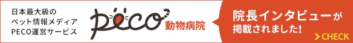 日本最大級のペット情報メディアPECO運営サービス PECO動物病院に、院長インタビューが掲載されました!