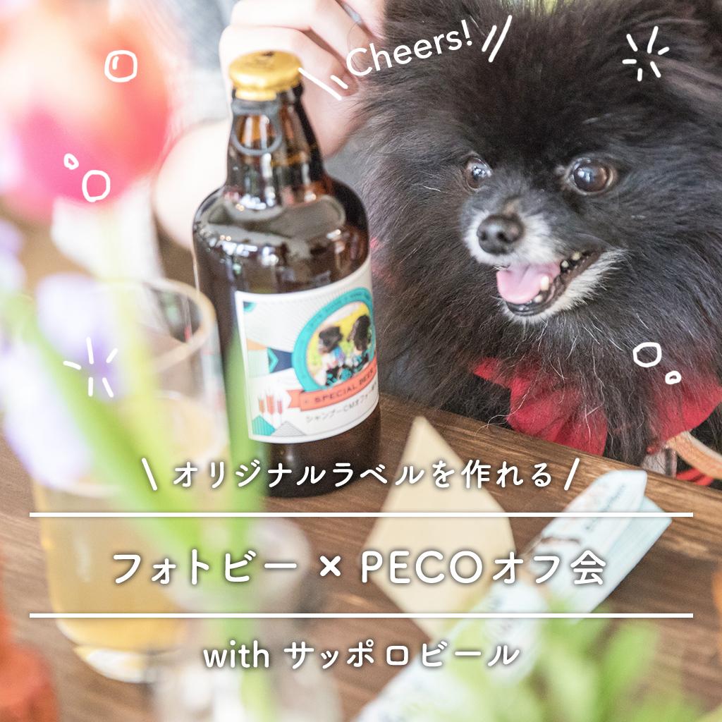 サッポロビール(フォトビー)