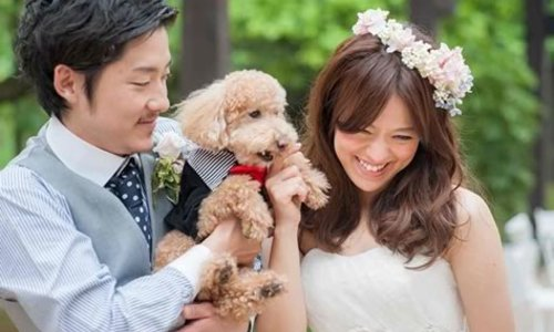 【おすすめ】ペットと一緒に結婚式できる式場まとめ【ウェディング】