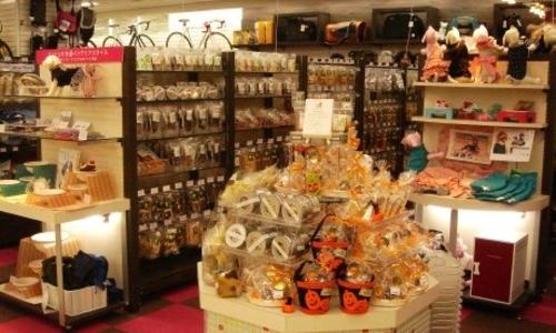渋谷でペット用品を探したい! 素敵なお店を一挙紹介します