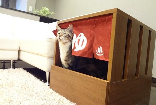 にゃんとも温泉気分♡設置するだけで猫トイレが可愛くなる秘密ののれん♪