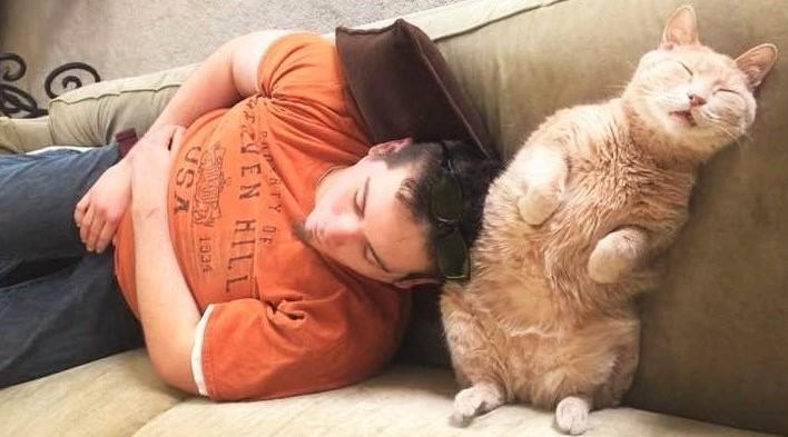 長い間施設にいたネコに、家族ができた! → 新しいお家で、初日からリラックスしまくる♡(5枚)