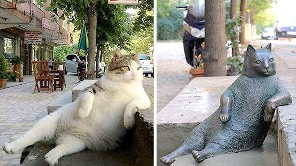 ある一枚の画像で、世界一有名になったニャンコ→ 亡くなった後、銅像が建てられる…(*´ω`*)