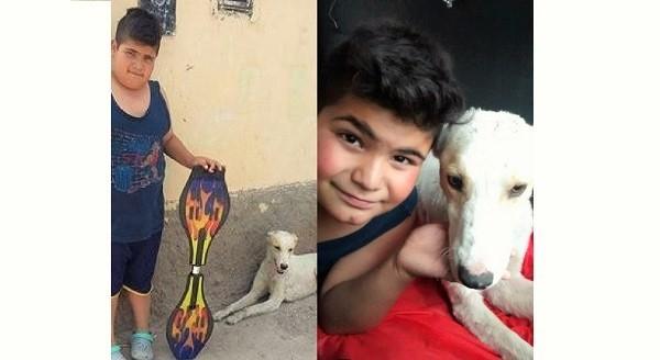 ワンコの足の治療の為、大切なオモチャを売る事にした少年。その行動が、世界中の人々の心を動かす…!