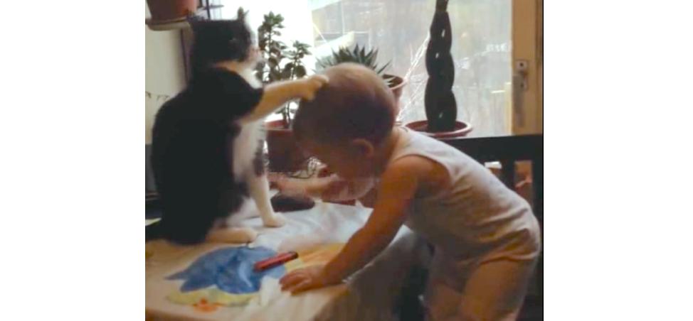 【ニャンコ先輩による猫パンチ講座♪】微笑ましいパンチ合戦にホッコリが止まらない…♡