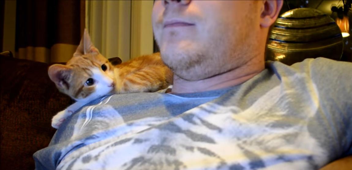 【猫と暮らすと起きること】男性と愛猫との日常が、あるある過ぎて笑っちゃう…♡(7選)
