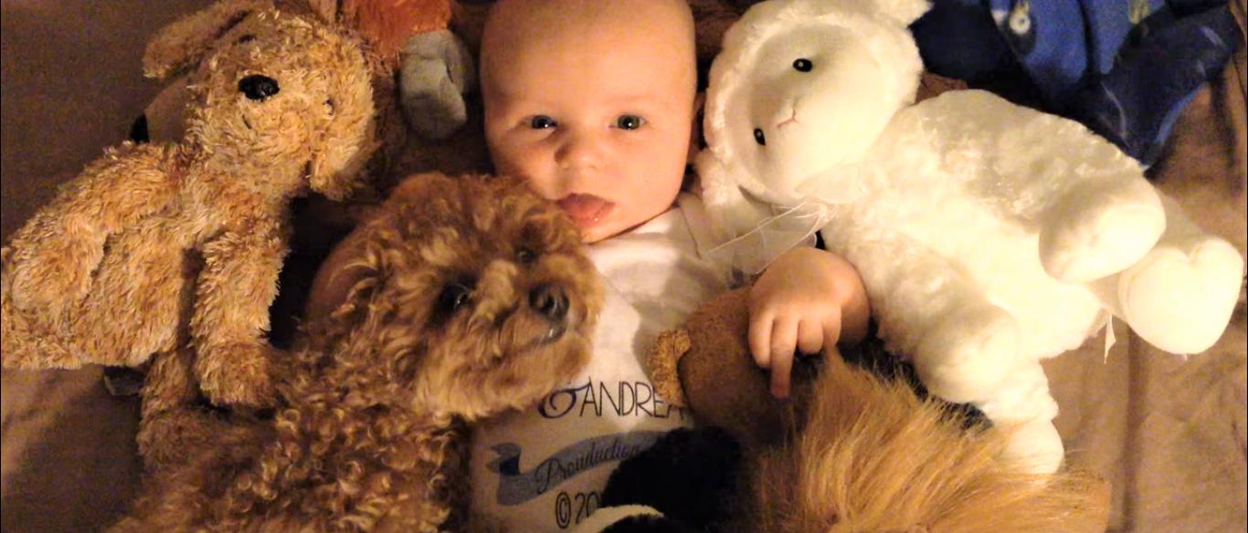 おやすみ中の赤ちゃんに、ピッタリ寄り添うワンコ♪ 仲良しなふたりの姿が、ほっこりすぎた…(*´Д`)