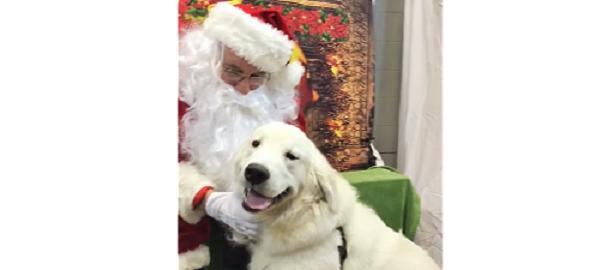 サンタさんに会って大喜び! ニコニコ笑顔で無邪気に喜ぶワンコが、まるで子どもみたい…(*´ェ`*)♡