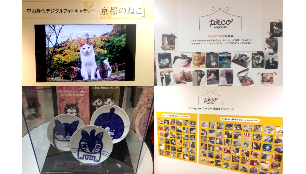 『PECO NEKO館』@ジェイアール京都伊勢丹が開催中! 会場の雰囲気をお伝えします♪