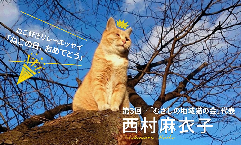 【ねこ好きリレーエッセイ】わたしの地域猫活動日記 | PECO(ペコ)