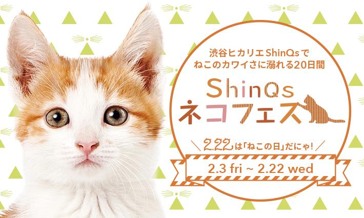 【ShinQs × PECO】2月3日~22日渋谷ヒカリエにて「ShinQs ネコフェス!!」が開催