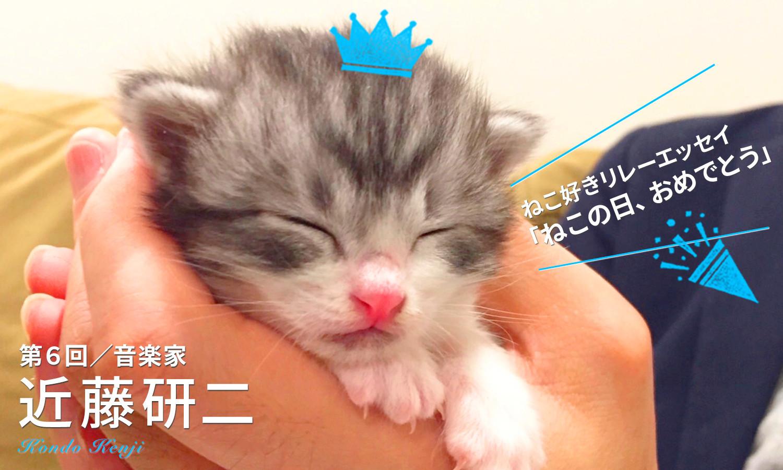 【ねこ好きリレーエッセイ】猫の音
