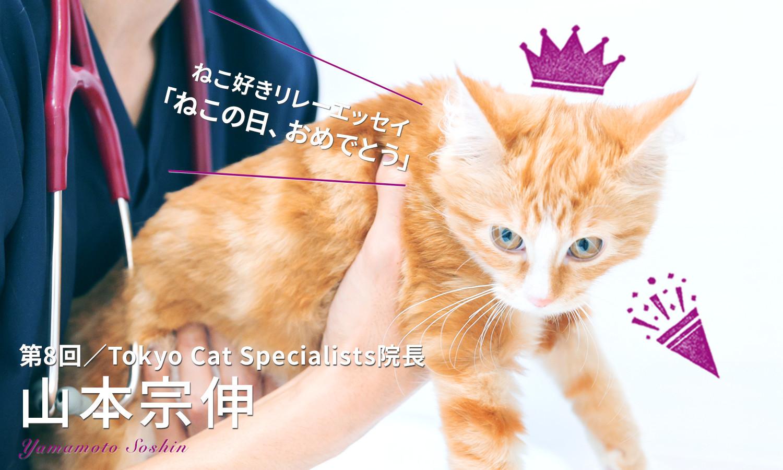 【ねこ好きリレーエッセイ】猫人生