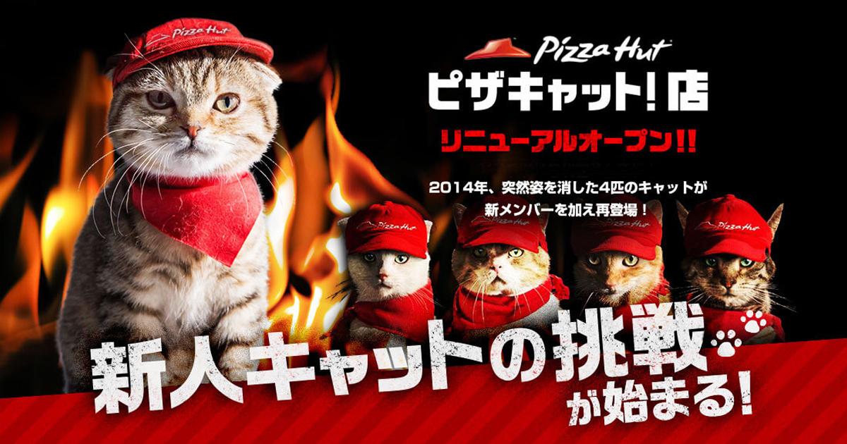 """猫が店員のピザハット『ピザキャット!店』がリニューアルオープン! """"にゃんにゃん割"""" に挑戦ニャ!"""