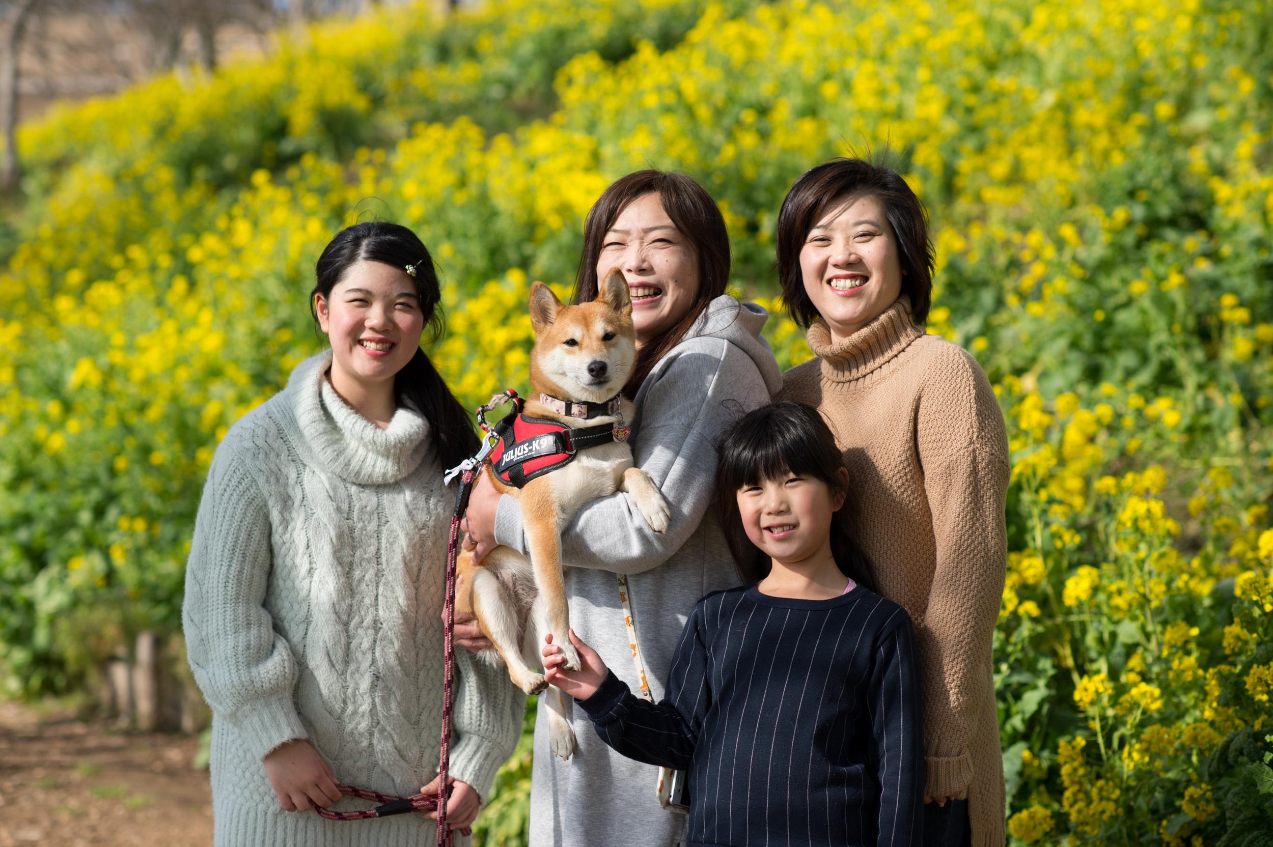 愛犬と楽しめる【マザー牧場】この時期のおすすめは、黄色の菜の花♡ 撮影会密着レポートをお届け♪
