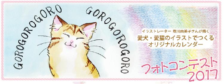 愛犬・愛猫の写真を投稿しよう♪ オリジナルカレンダーフォトコンテス ト開催中!