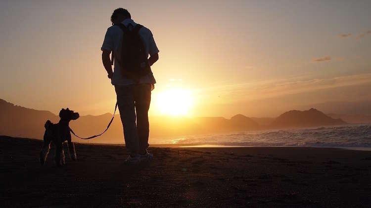 愛犬と特別なひと時を。都心から2時間で、こんなにステキな「思い出づくり」ができた♫