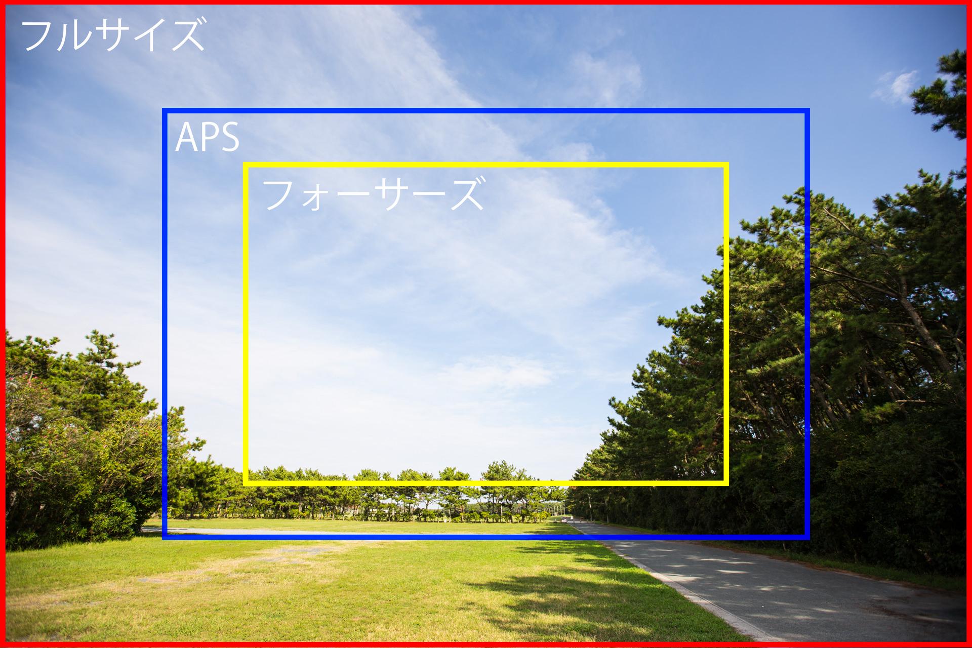 フルサイズ(赤)、APS(青)、フォーサーズ(黄)の画角の違いを表した図