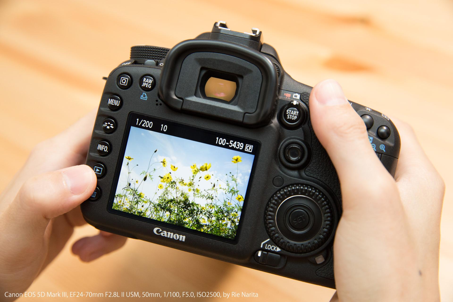 一眼レフカメラの「再生ボタン」を押して撮影した画像を確認しているところ