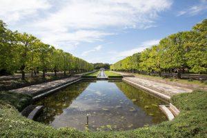 昭和記念公園の景色